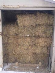 Продаю луговое сено