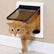 Врезная дверца для кошек и маленьких собак